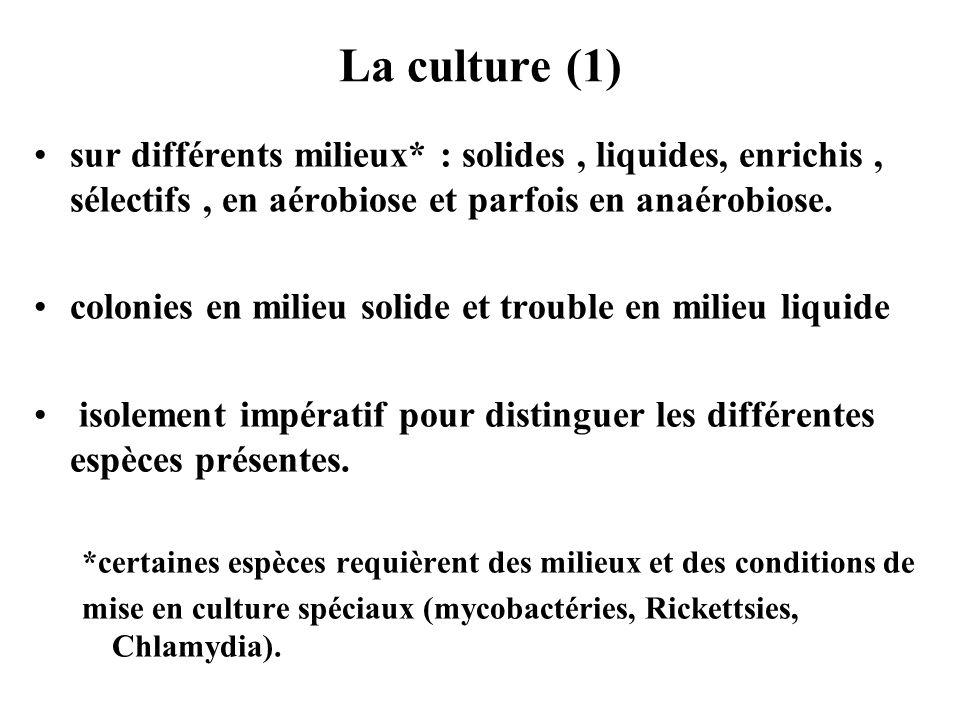 La culture (1) sur différents milieux* : solides, liquides, enrichis, sélectifs, en aérobiose et parfois en anaérobiose. colonies en milieu solide et