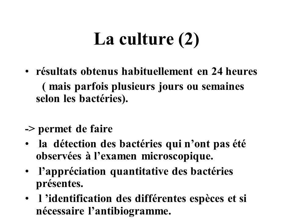 La culture (2) résultats obtenus habituellement en 24 heures ( mais parfois plusieurs jours ou semaines selon les bactéries). -> permet de faire la dé