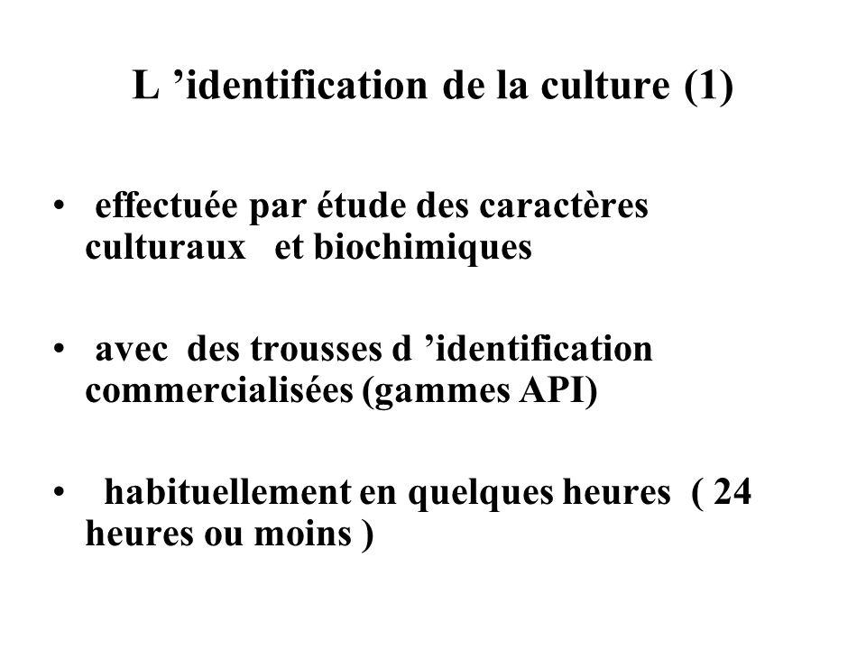 L identification de la culture (1) effectuée par étude des caractères culturaux et biochimiques avec des trousses d identification commercialisées (ga