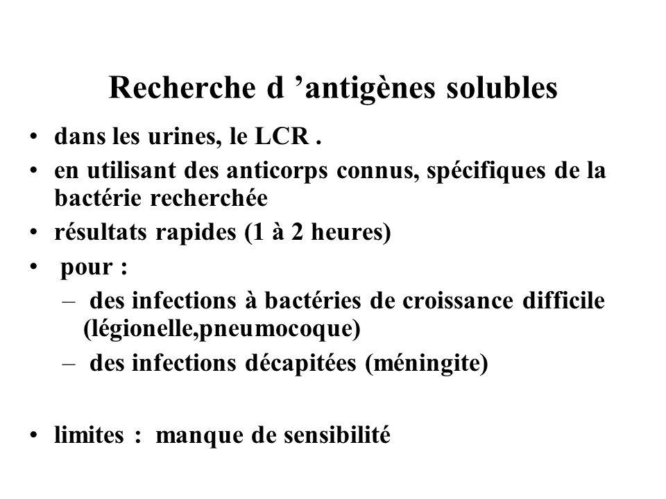 Recherche d antigènes solubles dans les urines, le LCR. en utilisant des anticorps connus, spécifiques de la bactérie recherchée résultats rapides (1