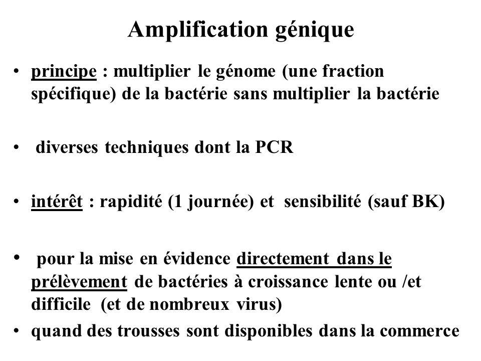 Amplification génique principe : multiplier le génome (une fraction spécifique) de la bactérie sans multiplier la bactérie diverses techniques dont la