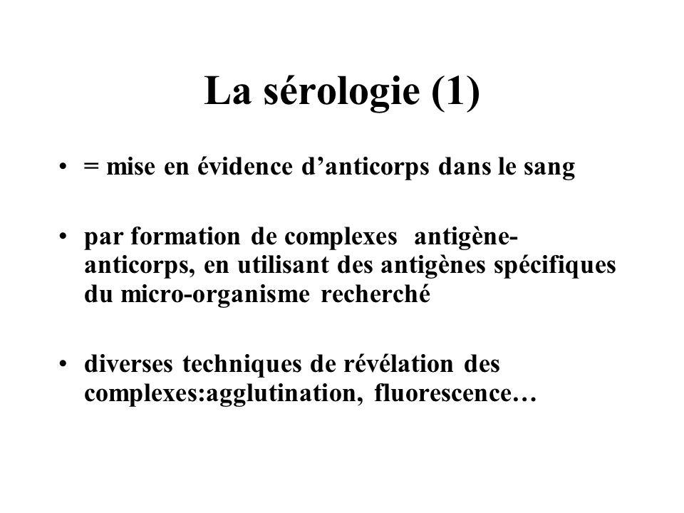La sérologie (1) = mise en évidence danticorps dans le sang par formation de complexes antigène- anticorps, en utilisant des antigènes spécifiques du