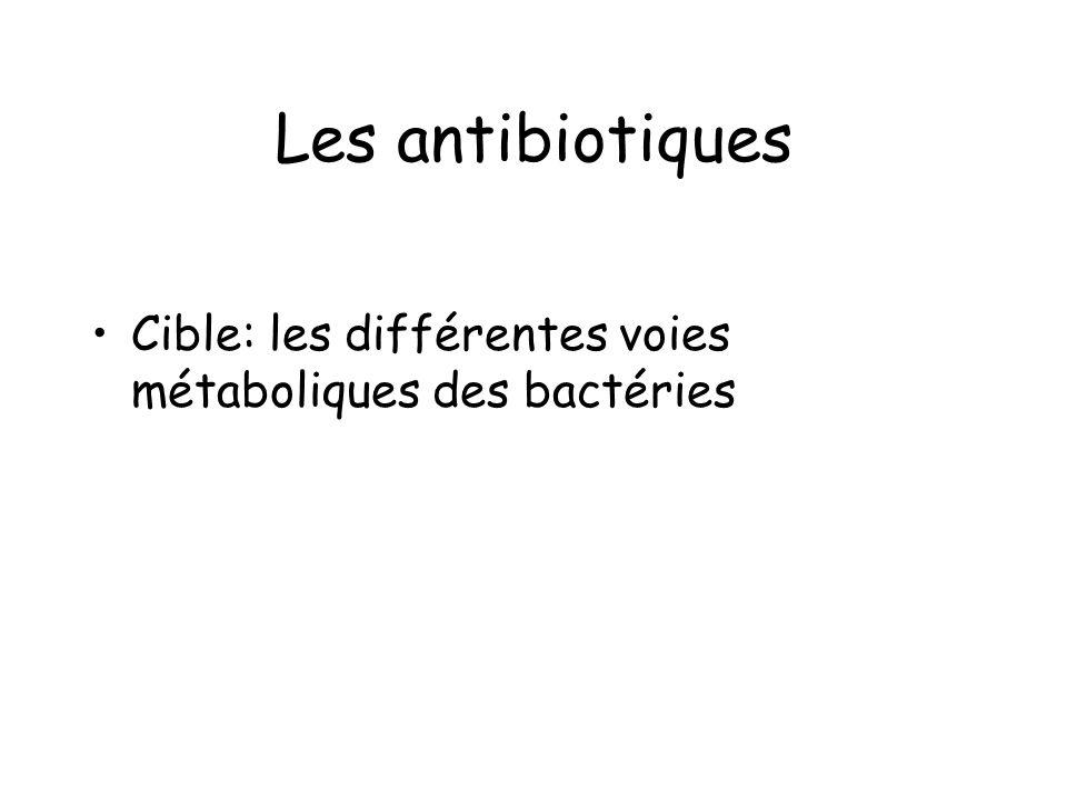 Les antibiotiques Cible: les différentes voies métaboliques des bactéries