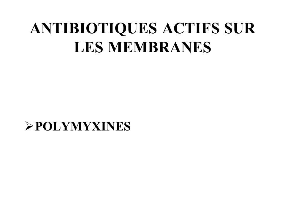 ANTIBIOTIQUES ACTIFS SUR LES MEMBRANES POLYMYXINES
