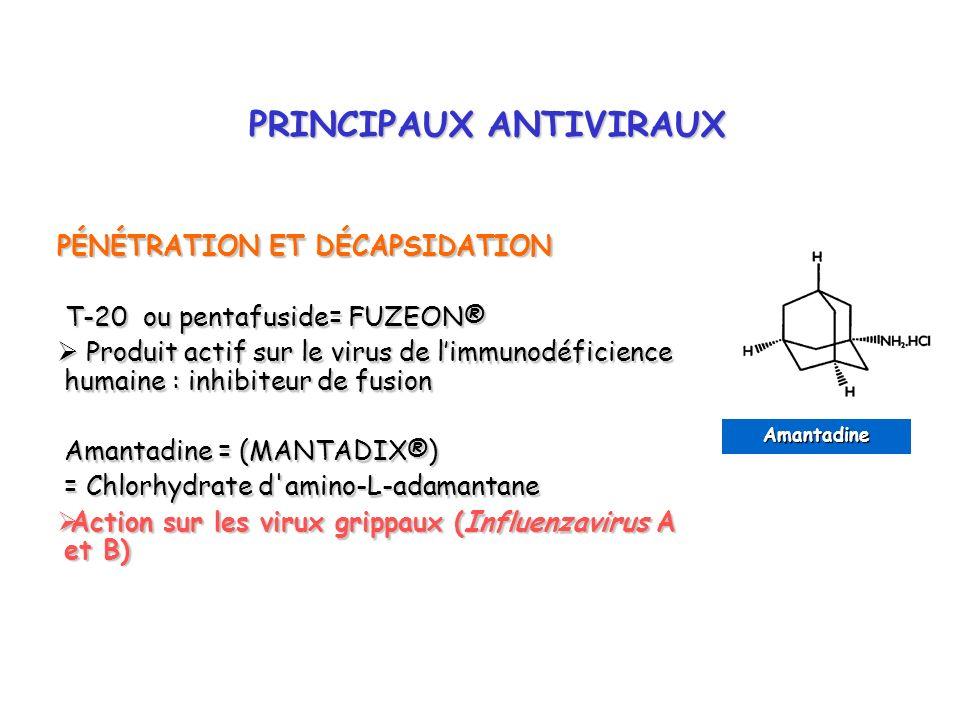PRINCIPAUX ANTIVIRAUX PRINCIPAUX ANTIVIRAUX PÉNÉTRATION ET DÉCAPSIDATION T-20 ou pentafuside= FUZEON® T-20 ou pentafuside= FUZEON® Produit actif sur l