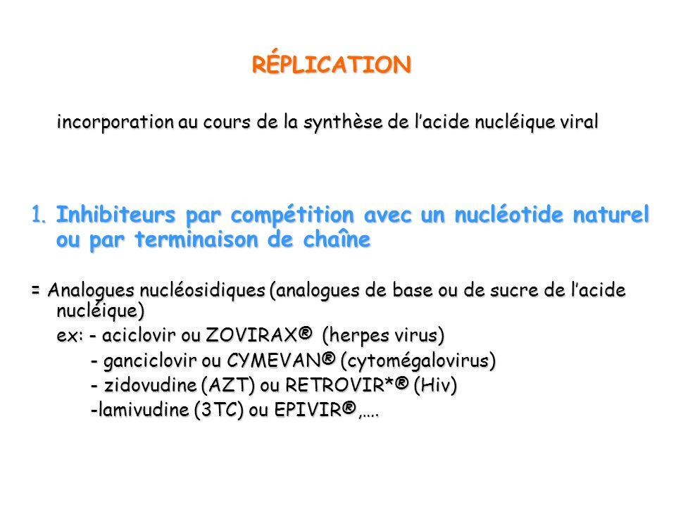 1. Inhibiteurs par compétition avec un nucléotide naturel ou par terminaison de chaîne = Analogues nucléosidiques (analogues de base ou de sucre de la