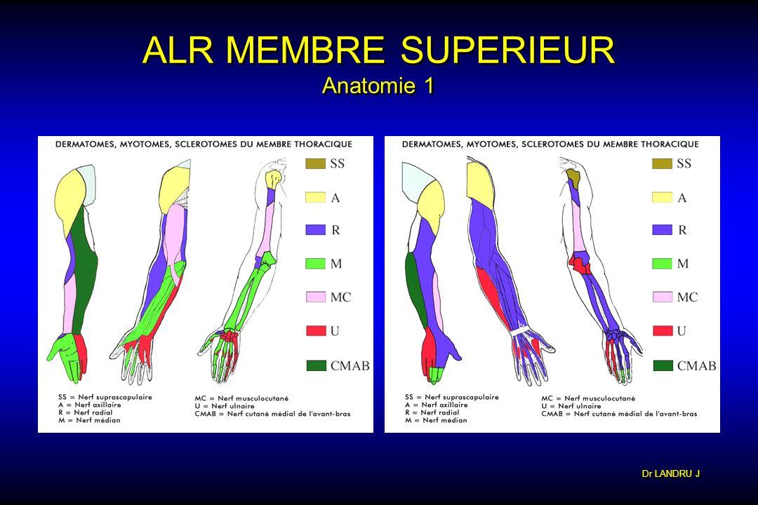 Dr LANDRU J ALR MEMBRE SUPERIEUR Anatomie 1
