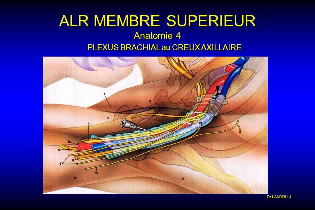 Dr LANDRU J ALR MEMBRE SUPERIEUR Anatomie 4 PLEXUS BRACHIAL au CREUX AXILLAIRE