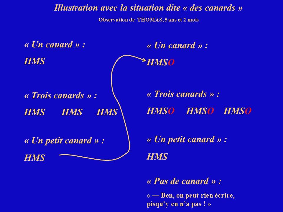Illustration avec la situation dite « des canards » Observation de THOMAS, 5 ans et 2 mois « Un canard » : HMS « Trois canards » : HMS HMS HMS « Un pe