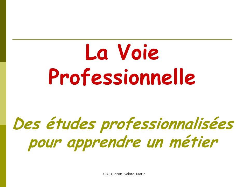 La Voie Professionnelle Des études professionnalisées pour apprendre un métier