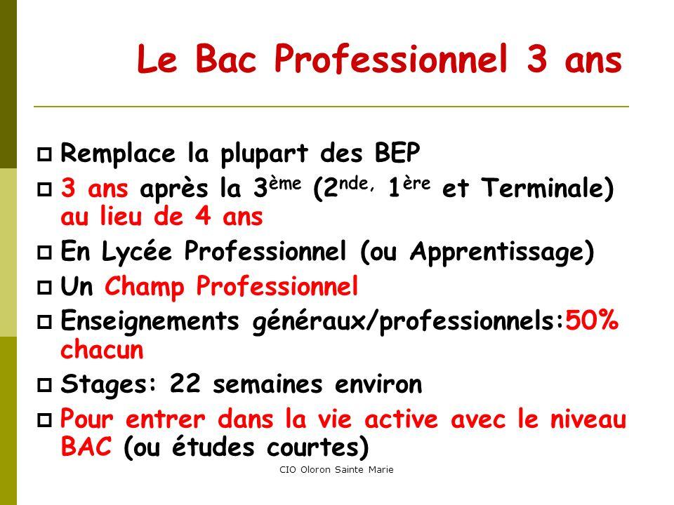 CIO Oloron Sainte Marie Le Bac Professionnel 3 ans Remplace la plupart des BEP 3 ans après la 3 ème (2 nde, 1 ère et Terminale) au lieu de 4 ans En Ly