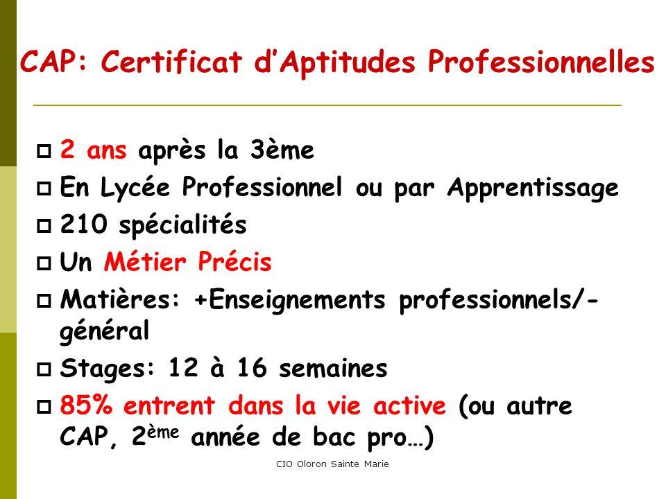 CIO Oloron Sainte Marie CAP: Certificat dAptitudes Professionnelles 2 ans après la 3ème En Lycée Professionnel ou par Apprentissage 210 spécialités Un