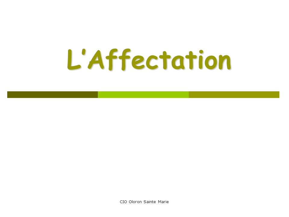 CIO Oloron Sainte Marie LAffectation