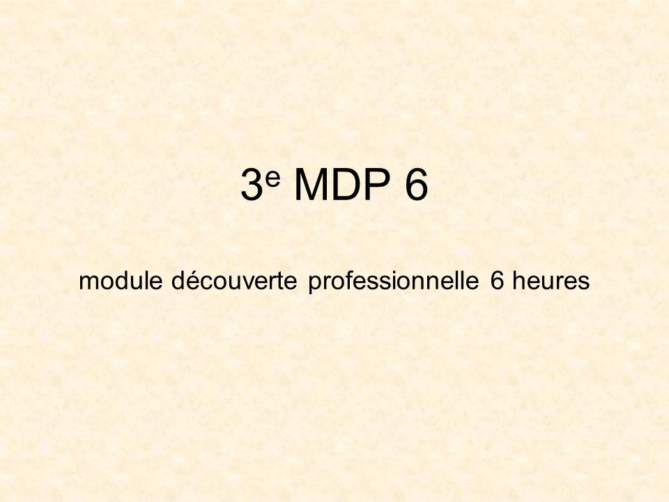 Le classe de 3 e MDP 6 : -Préparation au brevet des collèges -Découverte des métiers -Préparation à lorientation