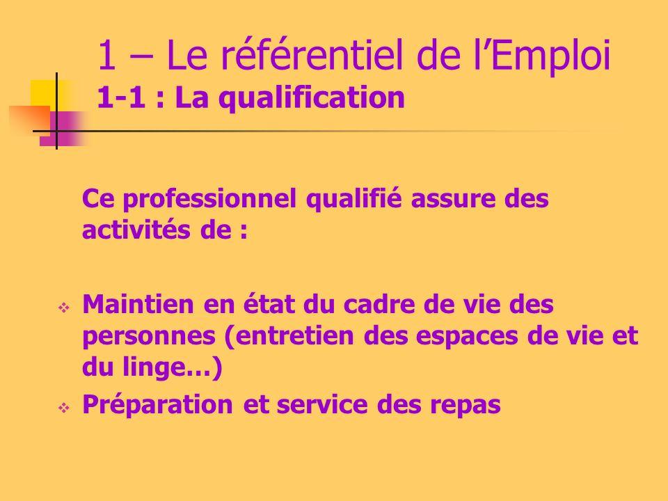2 – Le référentiel de lEmploi 2-1 La qualification Ce professionnel : Contribue au bien-être des personnes à leur domicile ou en structures Sait sadapter au contexte Travaille éventuellement en équipe