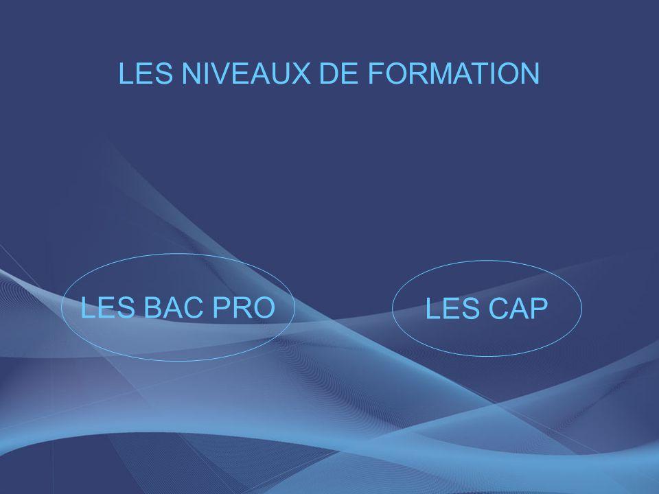 LES NIVEAUX DE FORMATION LES CAP LES BAC PRO