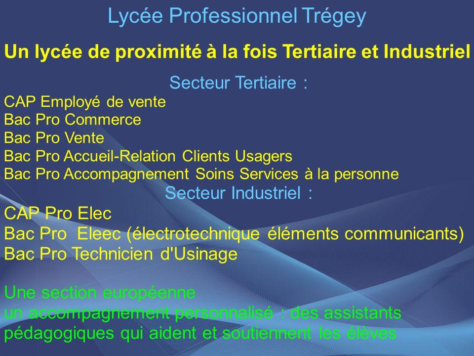 Lycée Professionnel Trégey Un lycée de proximité à la fois Tertiaire et Industriel Secteur Tertiaire : CAP Employé de vente Bac Pro Commerce Bac Pro V