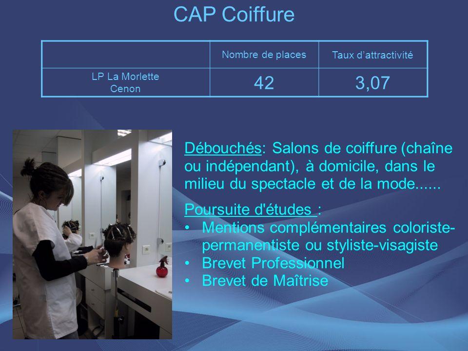 CAP Coiffure Débouchés: Salons de coiffure (chaîne ou indépendant), à domicile, dans le milieu du spectacle et de la mode...... Poursuite d'études : M