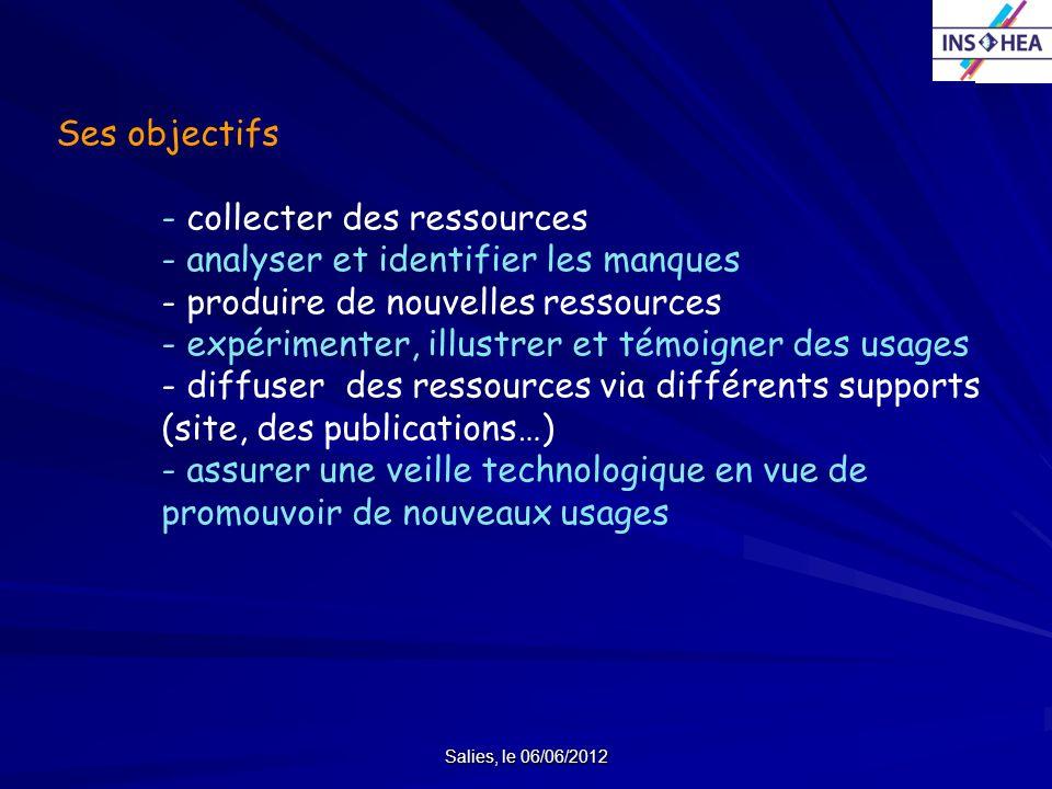 Salies, le 06/06/2012 Ses objectifs - collecter des ressources - analyser et identifier les manques - produire de nouvelles ressources - expérimenter,