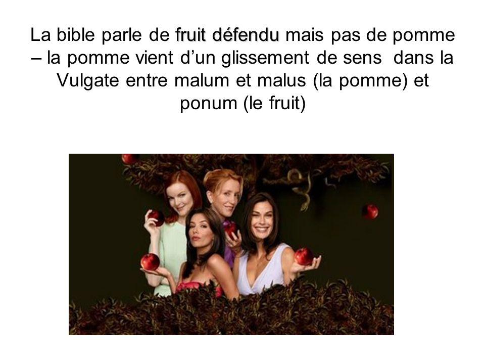 fruit défendu La bible parle de fruit défendu mais pas de pomme – la pomme vient dun glissement de sens dans la Vulgate entre malum et malus (la pomme