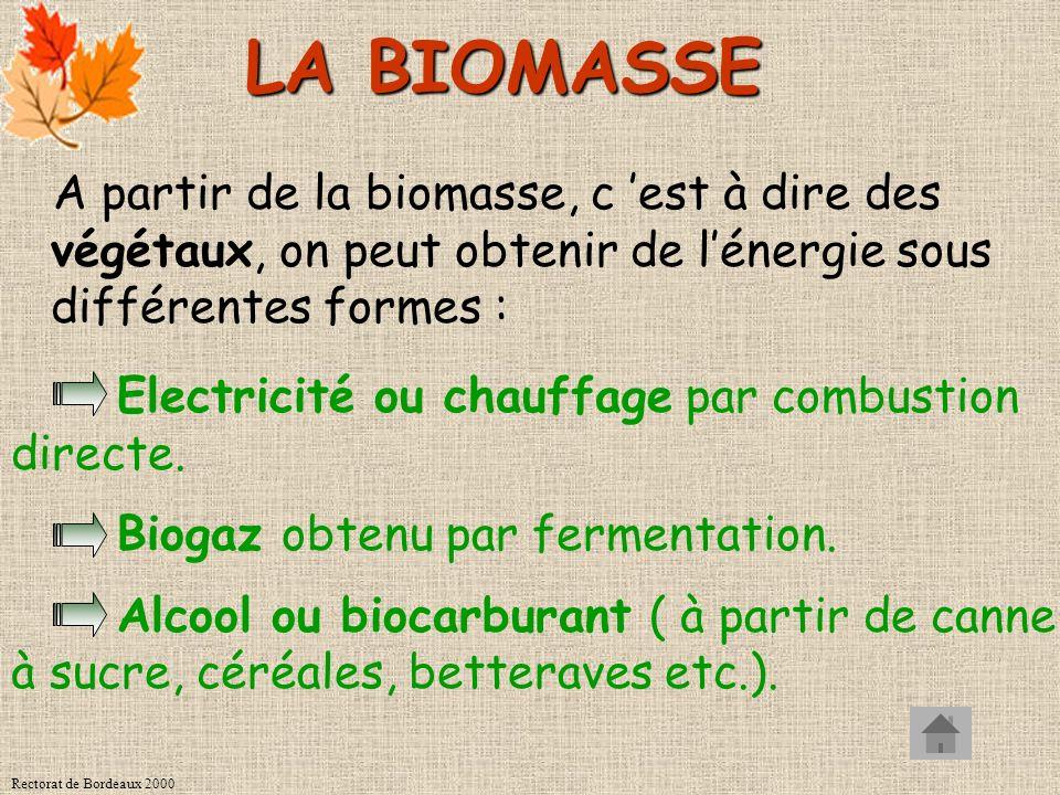 Rectorat de Bordeaux 2000 LA BIOMASSE A partir de la biomasse, c est à dire des végétaux, on peut obtenir de lénergie sous différentes formes : Electricité ou chauffage par combustion directe.