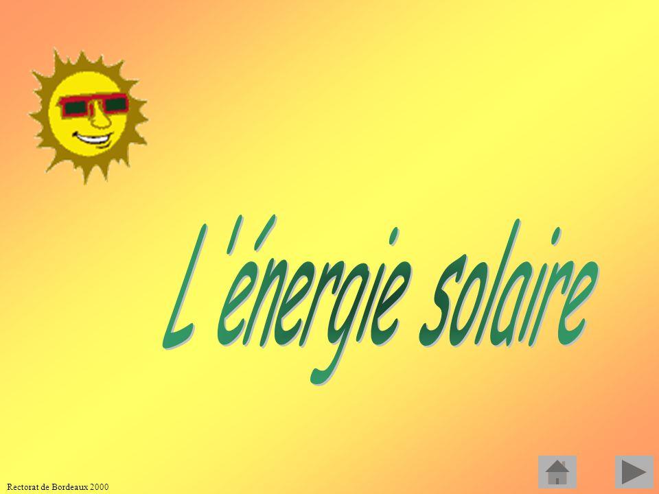 Rectorat de Bordeaux 2000 LA BIOMASSE A partir de la biomasse, c est à dire des végétaux, on peut obtenir de lénergie sous différentes formes : Electr