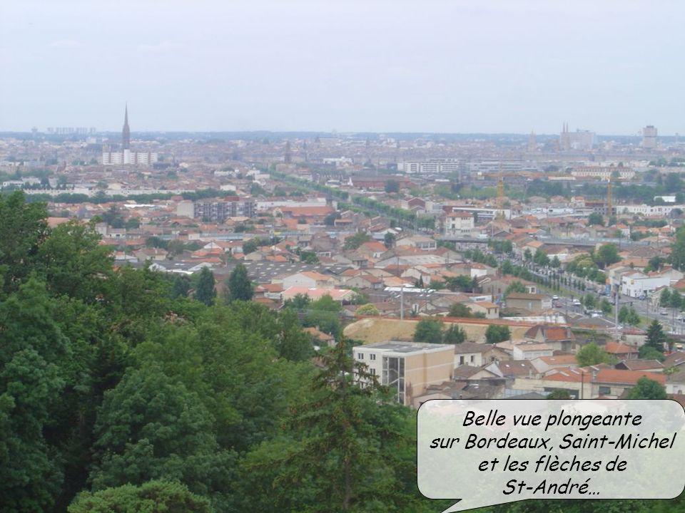 Belle vue plongeante sur Bordeaux, Saint-Michel et les flèches de St-André…