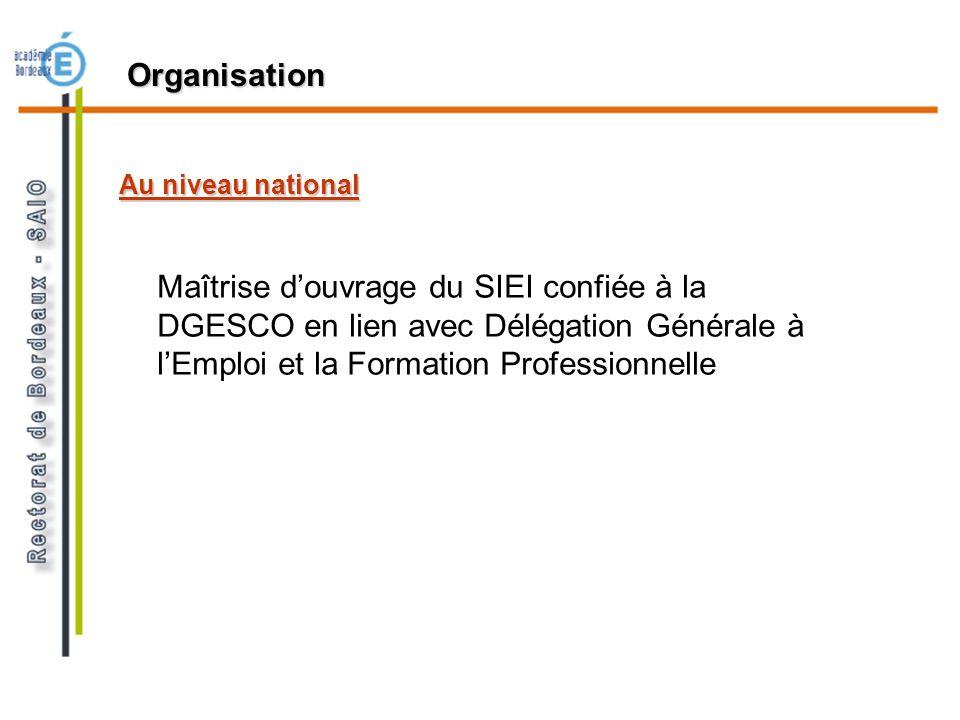Au niveau national Organisation Maîtrise douvrage du SIEI confiée à la DGESCO en lien avec Délégation Générale à lEmploi et la Formation Professionnel