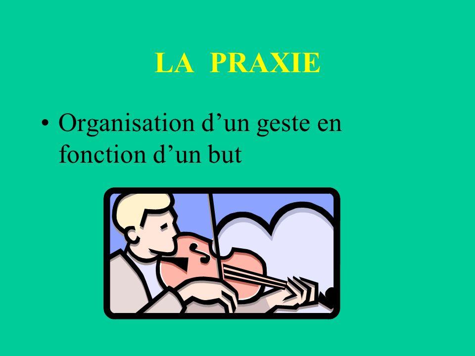 LA PRAXIE Organisation dun geste en fonction dun but