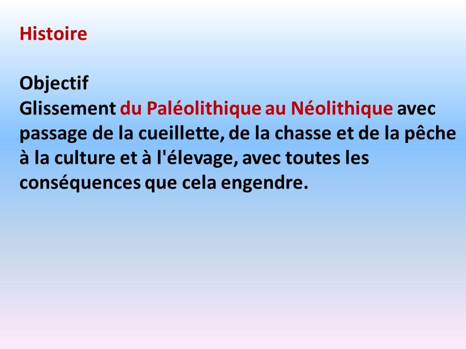 Histoire Objectif Glissement du Paléolithique au Néolithique avec passage de la cueillette, de la chasse et de la pêche à la culture et à l'élevage, a