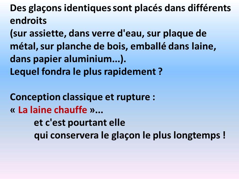 Des glaçons identiques sont placés dans différents endroits (sur assiette, dans verre d'eau, sur plaque de métal, sur planche de bois, emballé dans la