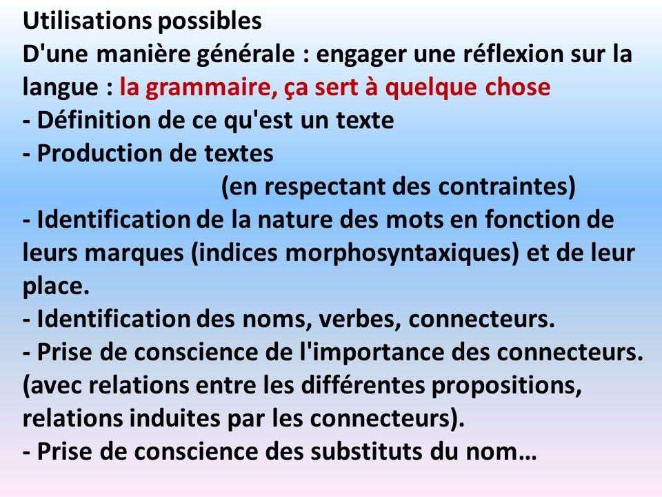 Utilisations possibles D'une manière générale : engager une réflexion sur la langue : la grammaire, ça sert à quelque chose - Définition de ce qu'est
