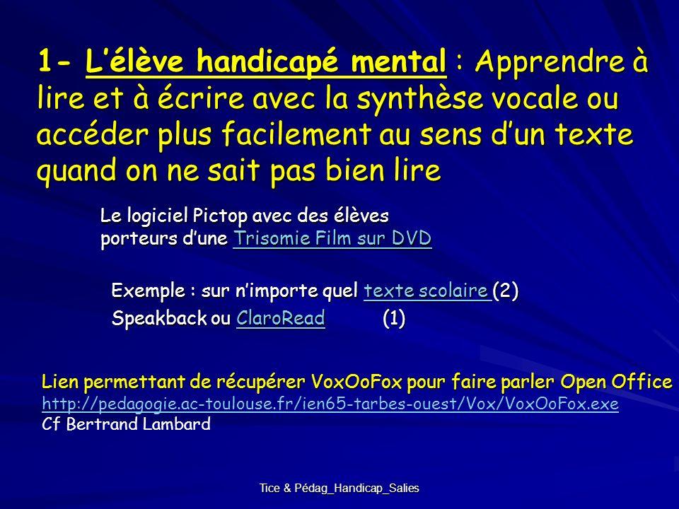 Tice & Pédag_Handicap_Salies 1- Lélève handicapé mental : Apprendre à lire et à écrire avec la synthèse vocale ou accéder plus facilement au sens dun
