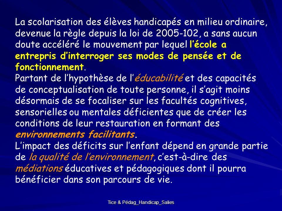 Tice & Pédag_Handicap_Salies La scolarisation des élèves handicapés en milieu ordinaire, devenue la règle depuis la loi de 2005-102, a sans aucun dout