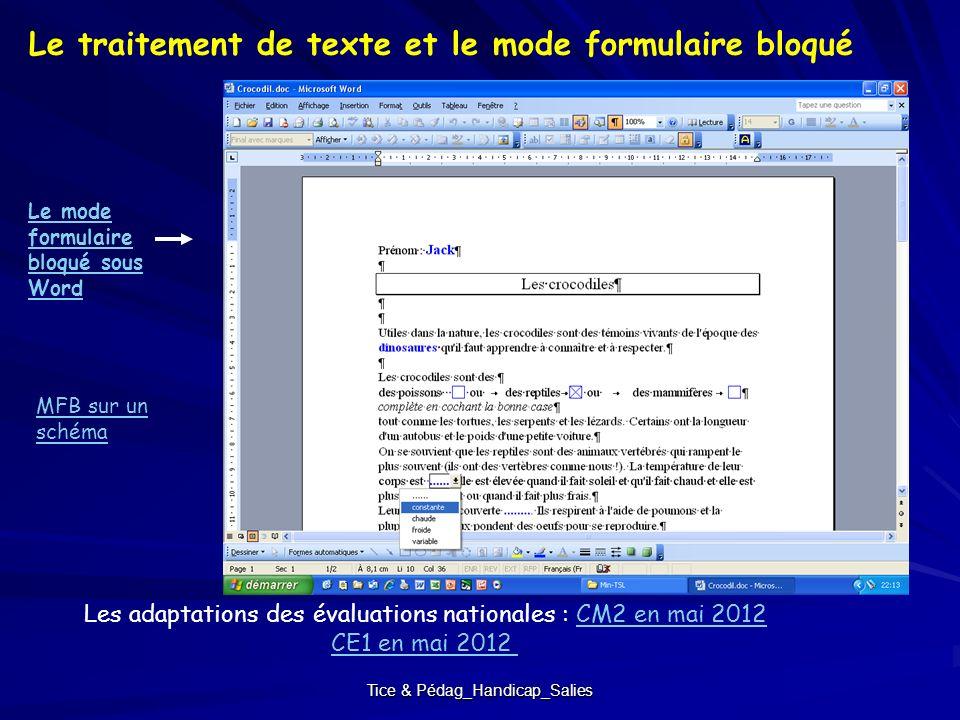 Tice & Pédag_Handicap_Salies Les adaptations des évaluations nationales : CM2 en mai 2012CM2 en mai 2012 CE1 en mai 2012 Le traitement de texte et le