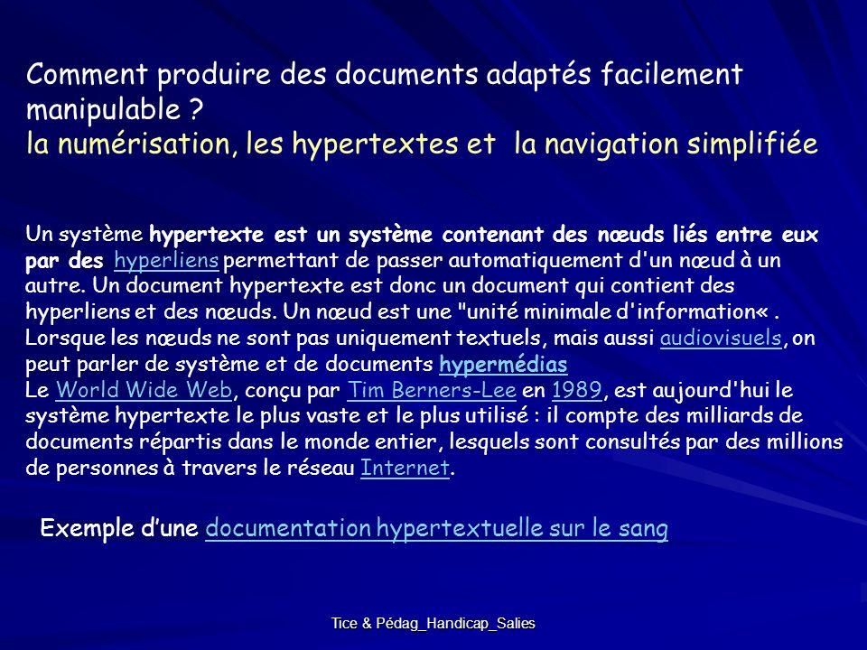 Tice & Pédag_Handicap_Salies Un système hypertexte est un système contenant des nœuds liés entre eux par des hyperliens permettant de passer automatiq