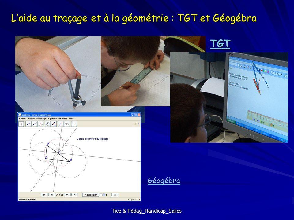 Tice & Pédag_Handicap_Salies Laide au traçage et à la géométrie : TGT et Géogébra TGT Géogébra