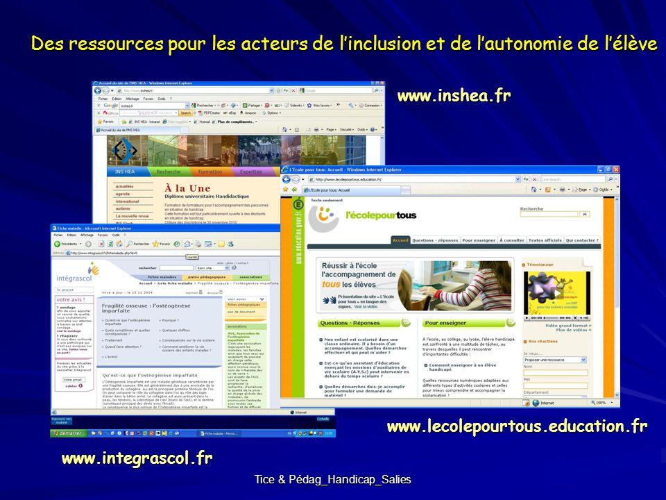 Tice & Pédag_Handicap_Salies Des ressources pour les acteurs de linclusion et de lautonomie de lélève www.inshea.fr www.integrascol.fr www.lecolepourt
