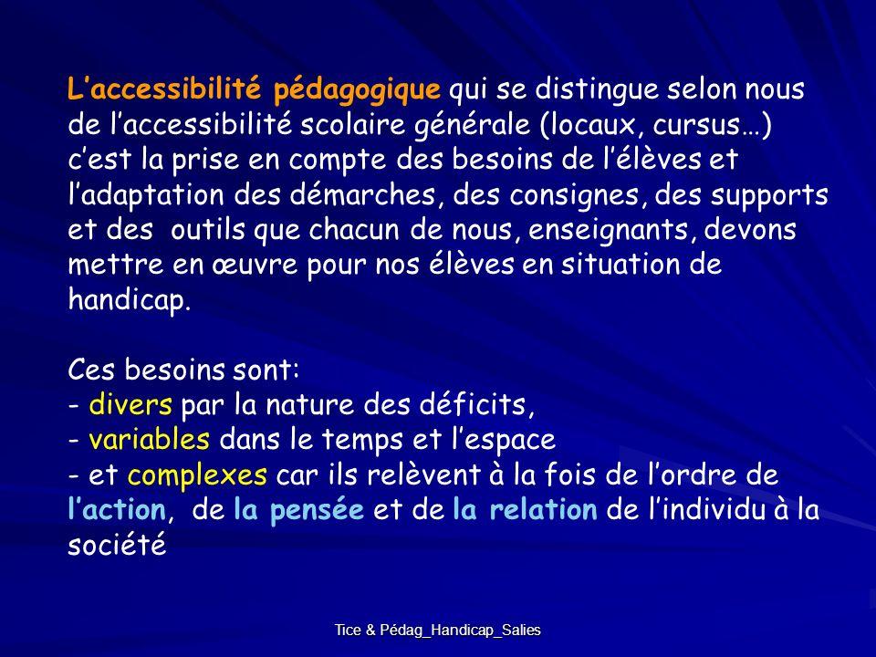 Tice & Pédag_Handicap_Salies Laccessibilité pédagogique qui se distingue selon nous de laccessibilité scolaire générale (locaux, cursus…) cest la pris