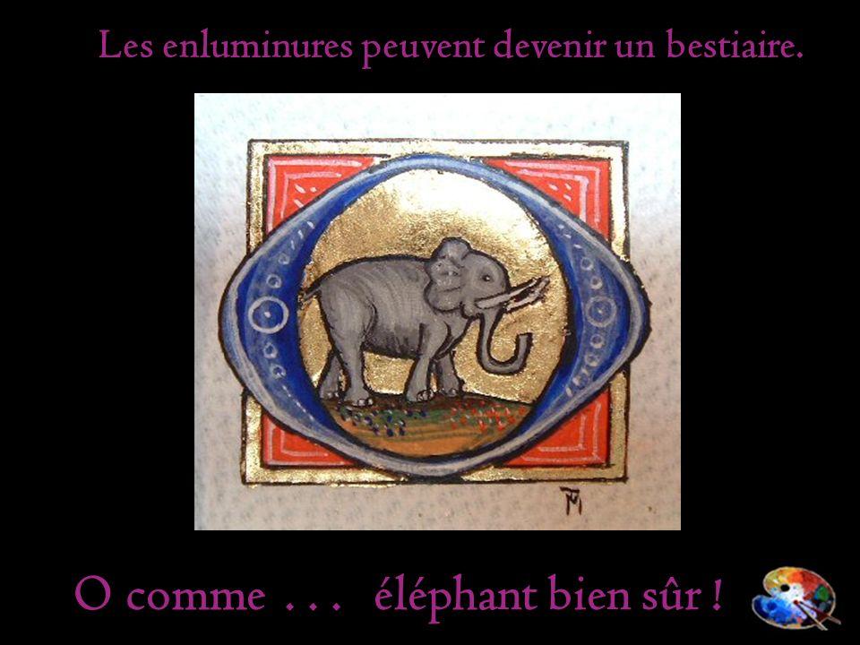 Les enluminures peuvent devenir un bestiaire. éléphant bien sûr ! O comme...