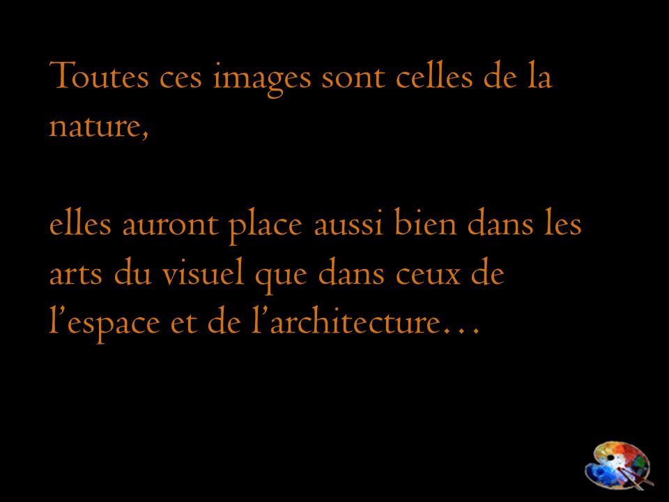 Toutes ces images sont celles de la nature, elles auront place aussi bien dans les arts du visuel que dans ceux de lespace et de larchitecture…