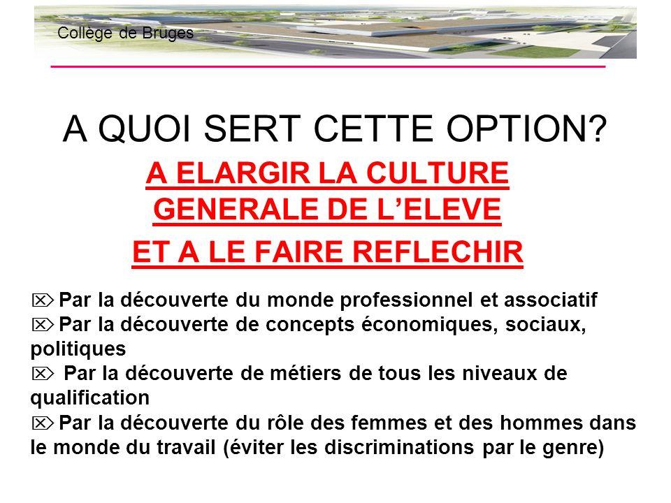 QUE FAIT-ON DANS CETTE OPTION? QUAPPREND-T-ON ? Collège de Bruges