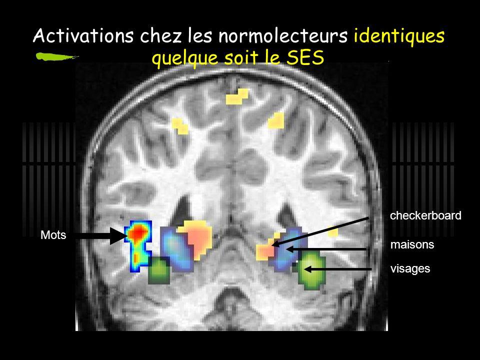 Activations chez les normolecteurs identiques quelque soit le SES maisons visages checkerboard Mots