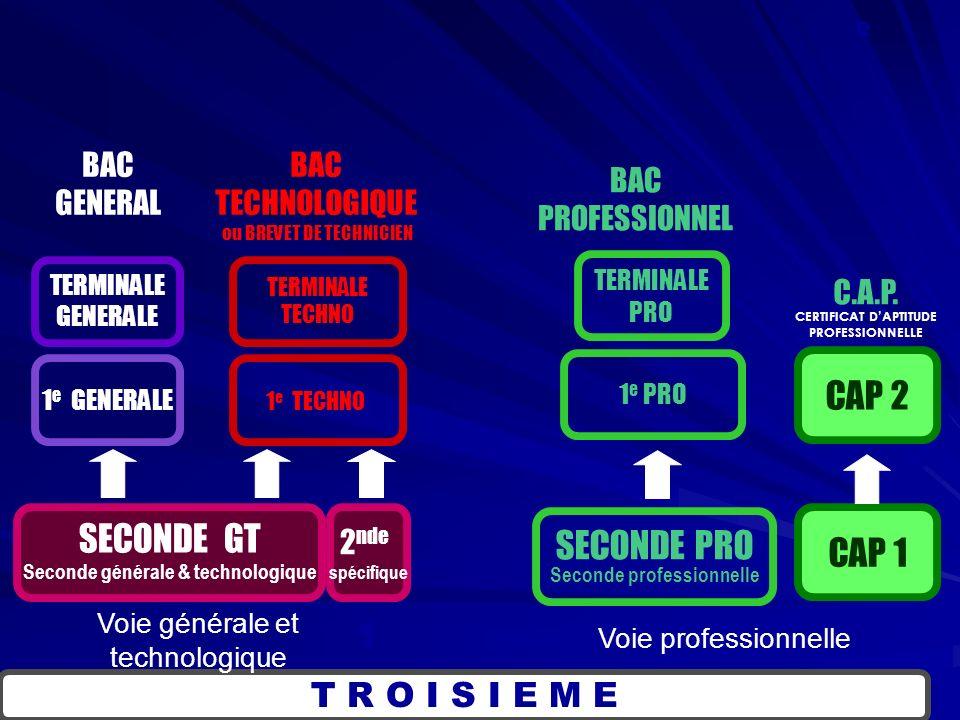 SECONDE PRO Seconde professionnelle T R O I S I E M E SECONDE GT Seconde générale & technologique 1 e PRO TERMINALE PRO CAP 1 CAP 2 BAC GENERAL BAC TECHNOLOGIQUE BAC PROFESSIONNEL C.A.P.