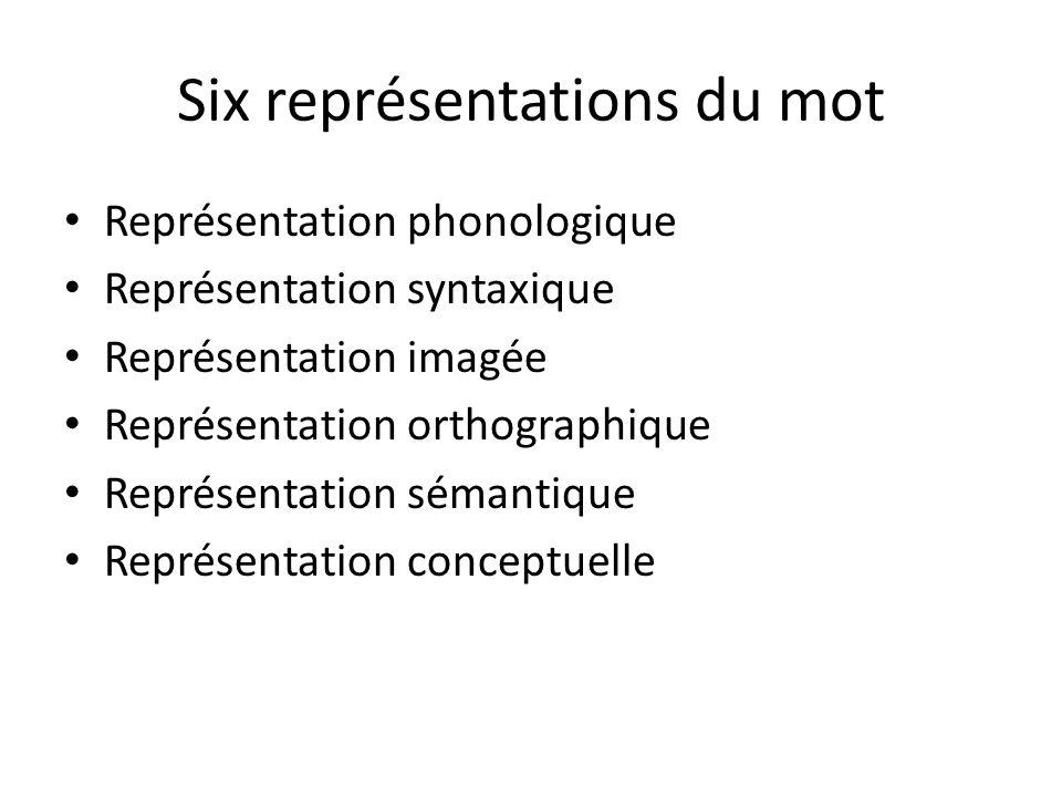 Six représentations du mot Représentation phonologique Représentation syntaxique Représentation imagée Représentation orthographique Représentation sé