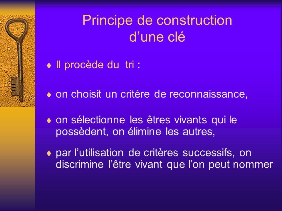 Principe de construction dune clé Il procède du tri : on choisit un critère de reconnaissance, on sélectionne les êtres vivants qui le possèdent, on é