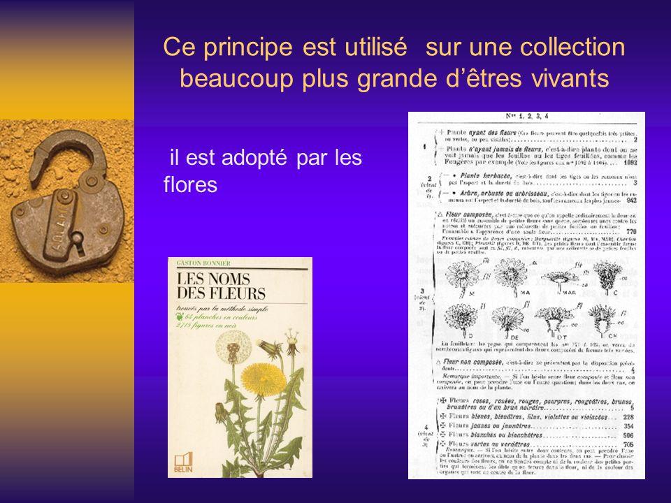 Ce principe est utilisé sur une collection beaucoup plus grande dêtres vivants il est adopté par les flores