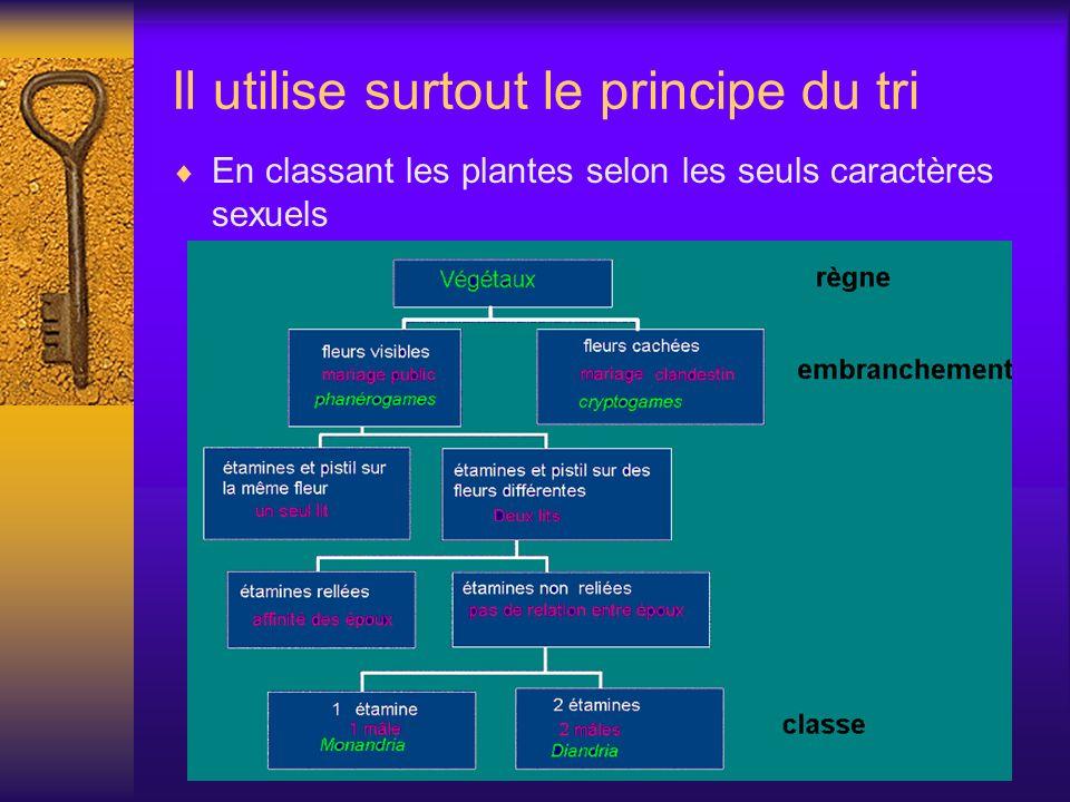 Il utilise surtout le principe du tri En classant les plantes selon les seuls caractères sexuels