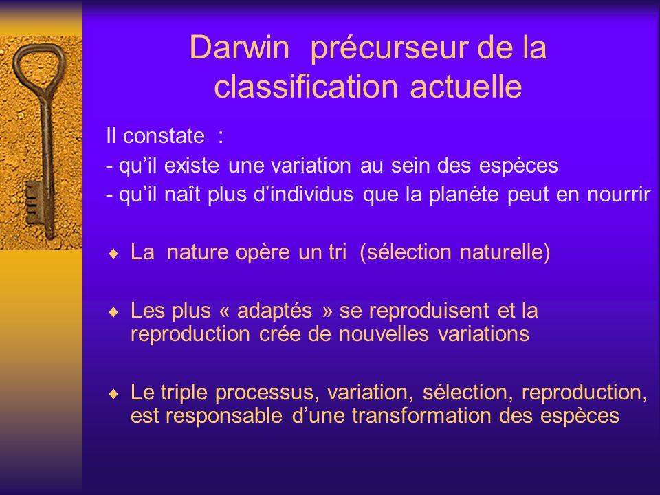 Darwin précurseur de la classification actuelle Il constate : - quil existe une variation au sein des espèces - quil naît plus dindividus que la planè