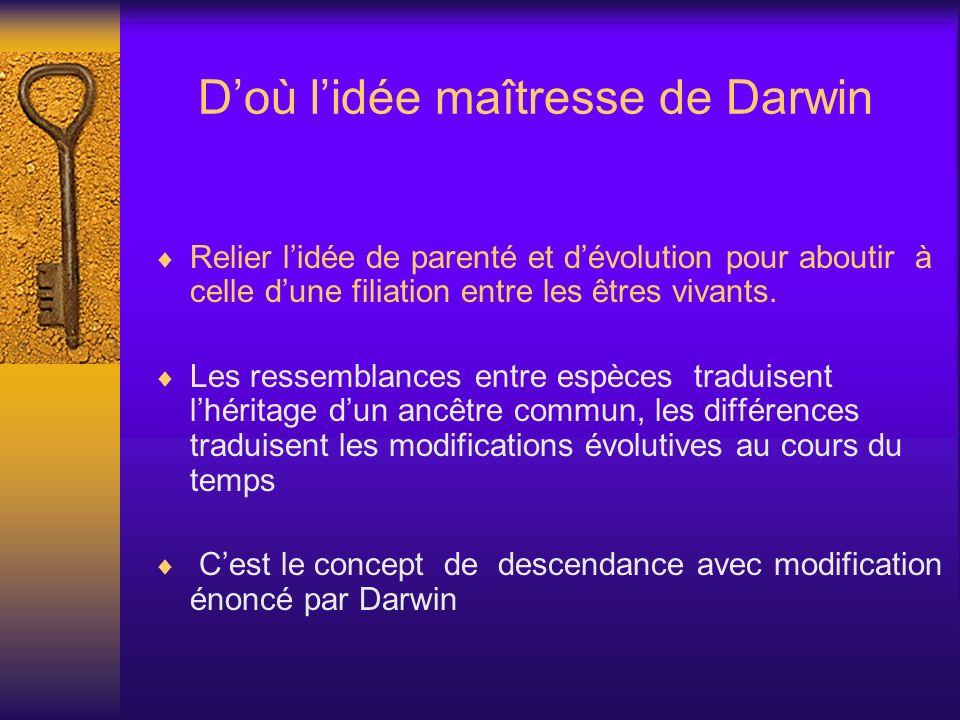 Doù lidée maîtresse de Darwin Relier lidée de parenté et dévolution pour aboutir à celle dune filiation entre les êtres vivants. Les ressemblances ent